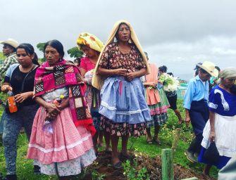 Séptimo defensor indígena de derechos humanos asesinado en un mes