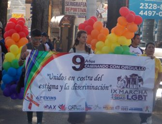Supporting Diversity:  LGBT Organizations
