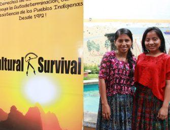 Convocatoria de entrenamiento para mujeres Indígenas activistas