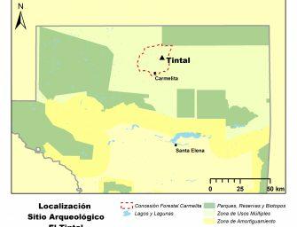 El Tintal: Cómo la investigación de una antigua ciudad Maya puede ayudarnos a comprender nuestro futuro