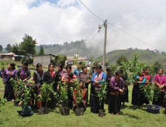 YABAL: Supporting the walk of communities in Guatemala