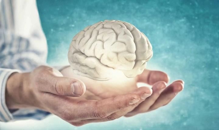 EL magnesio ayuda a mantener el cerebro saludable