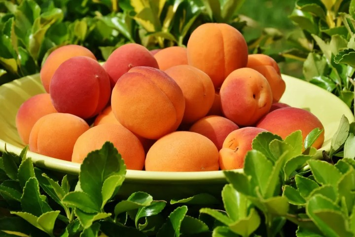 Problemas de no tomar fruta en tu dieta diaria