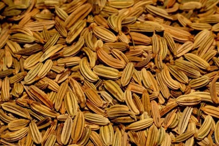 Perfil nutricional de las semillas de hinojo