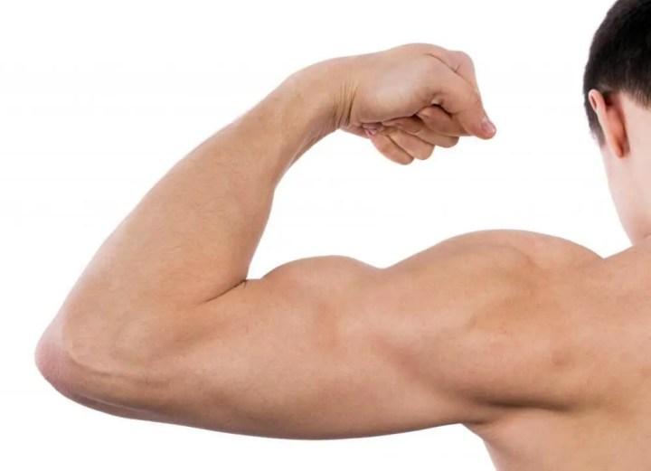 El saw palmetto puede aumentar la testosterona