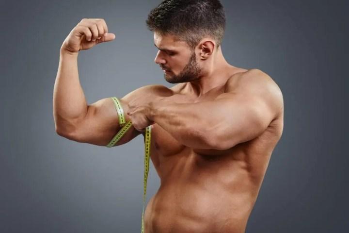 Longitud del sarcómero para el entrenamiento del área del bíceps