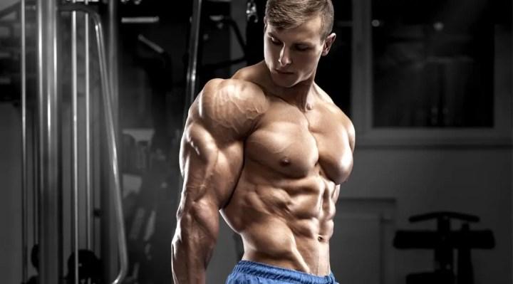 ¿Cómo fortalecer el tríceps braquial