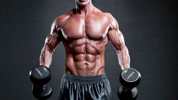 ¿Qué es el fallo muscular?