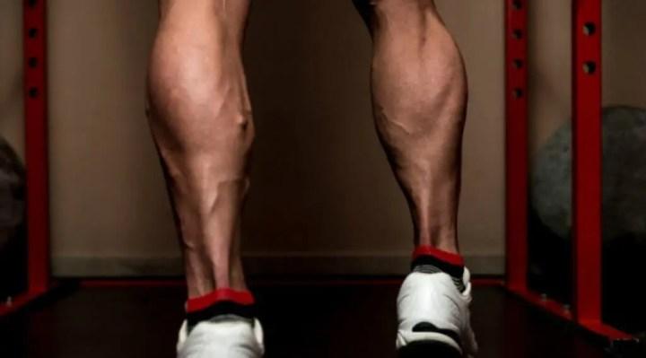Anatomía regional de los músculos de los gemelos