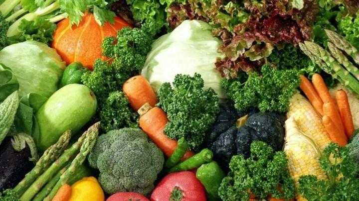 En que se basa una dieta a base de plantas