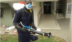 fumigation business