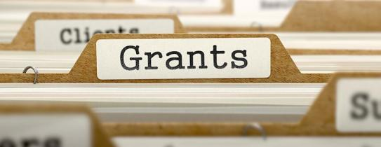 Grants-entrepreneur.ng