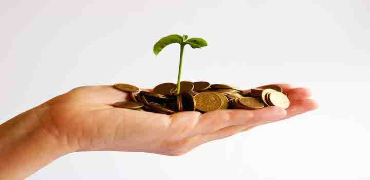 How to Invest in a Startup?