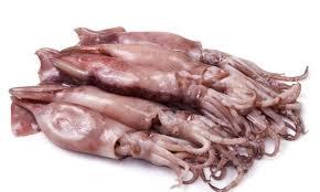 Manera de limpiar los calamares