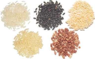 Diferentes tipos de arroz
