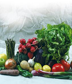 Tipos de nutrientes
