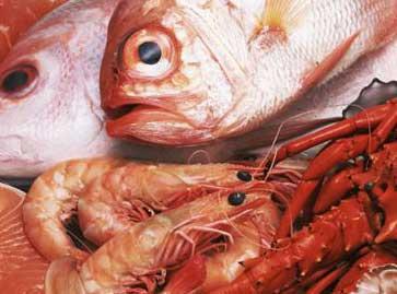 Pescados y mariscos: Sugerencias saludables