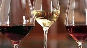Recomendaciones para conservar los vinos