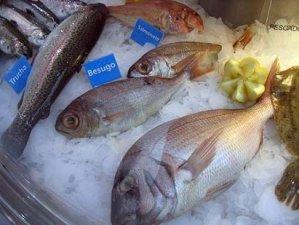conservacion del pescado