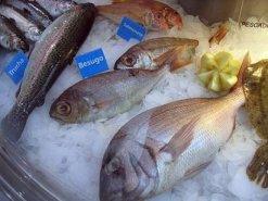 Consejos para la conservación de los pescados
