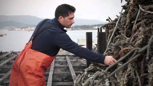 Calvo nos trae un documental sobre los mejillones gallegos