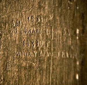 h4o7695-edek-mala-s