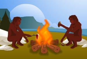 Biomasse feu préhistoire