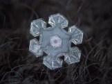 copo de nieve 6