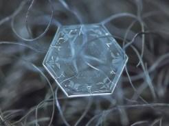 copo de nieve 9