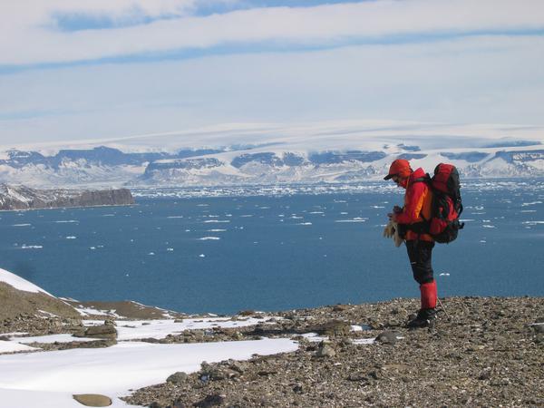 Antartida-1_imagelarge