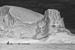 Hasta la fecha, los orígenes de la población de esta región, dura y glacial, era difícil de aclarar. / Carsten Egevang.