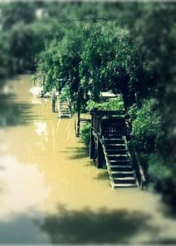 Río en Tigre