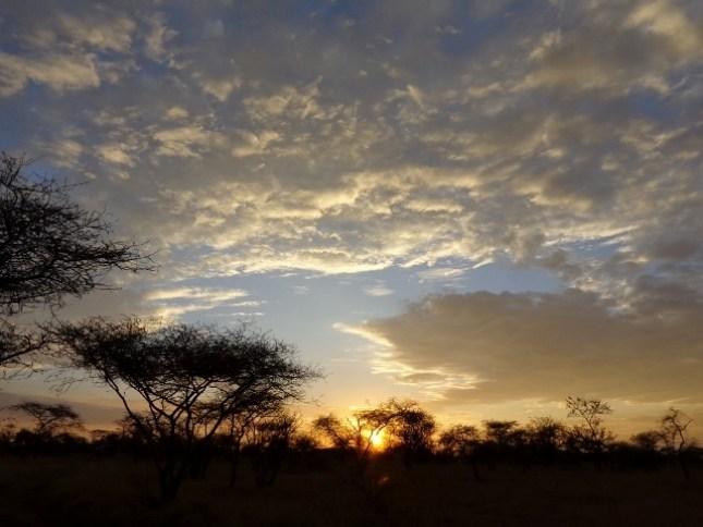 Puesta de sol en Serengeti