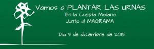 plantar2