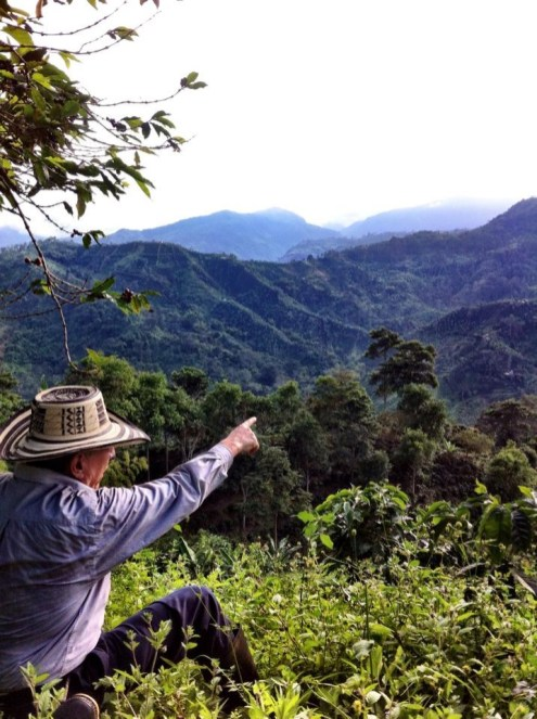 Joaquin, coffee producer