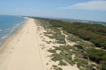 En la playa de la Redondela, entre Islantilla e Isla Cristina podemos encontrar pinares y sombras para comer tranquilos.