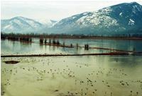 Creston Wetlands