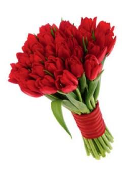 bonito bouquet de 20 tulipanes rojos 550 pesos