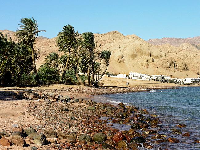 Dahab-Caribe en Medio Oriente
