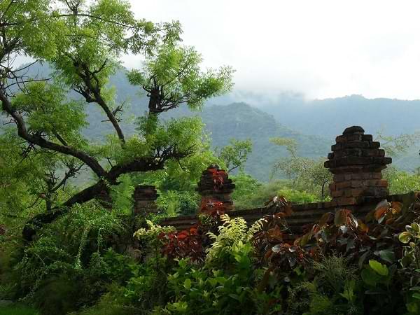 Indonesia - Tercer país más biodiverso del mundo