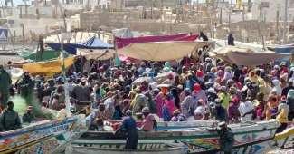 Senegal, Saint Louis - Mercado de peces