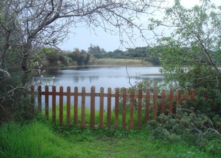 Despotiki Lake, CYCERE, Akrotiri, Limassol, Cyprus