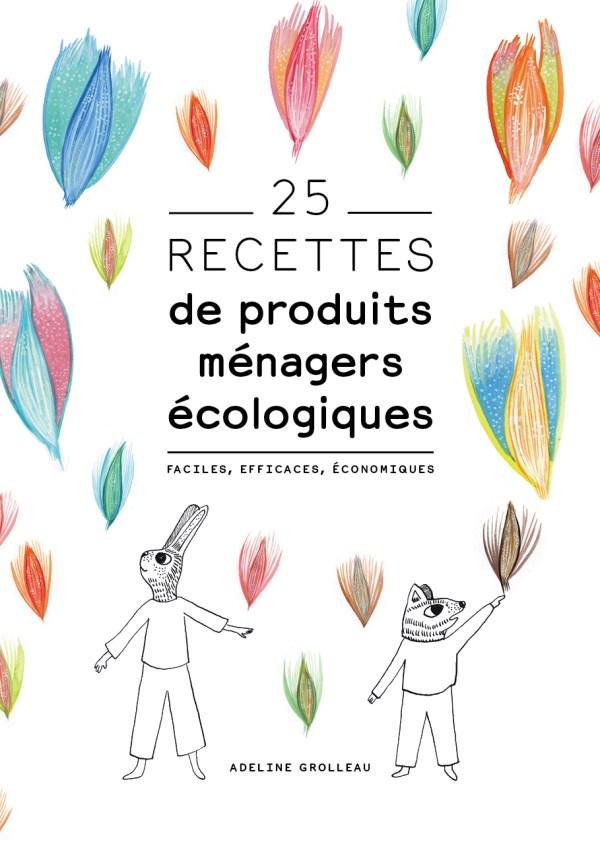 Livre de recettes de produits ménagers écologiques