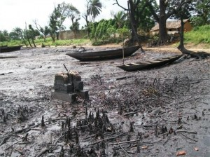 Land degradation from oil spill in Ogoniland, Nigeria