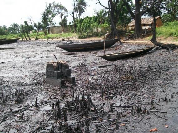 Land degradation from oil spill in Ogoniland, Nigeria