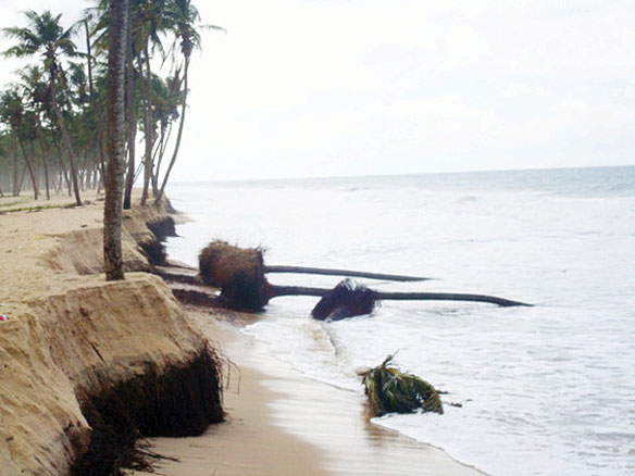 Lekki coastal erosion  Erosion ravages Lagos shoreline, NCF seeks government intervention Lekki1