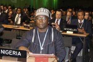 Salisu Dahiru, Head of Nigeria's UN-REDD Programme