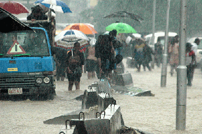 It's raining elephants and hippos at Ogba, Lagos.