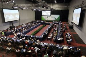 The GEF Assembly