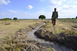 A man walks over an irrigation channel in East Africa. Photo: Courtesy Neil Palmer/CIAT  IPCC's AR5 and Africa: How climate change threatens continent's fragile growth dsc1422 650x430 300x198